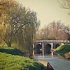 Alconbury Brook and Bridge Vintage by Melodee Scofield