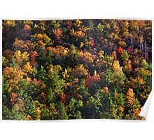 A Slice of Fall Poster