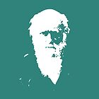 Darwin - Dark Green by Matt Aunger