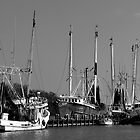 Shrimp Boats by cclaude