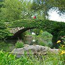 Gapstow Bridge by Cheryl  Lunde
