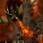 Dragon&#x27;s Siege by shutterbug2010