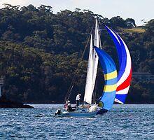 Ransa Sailing #2 by Beth  Morley