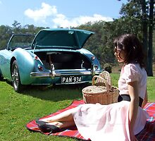 Austin Healey Picnic by mtmeegallery