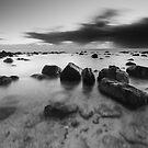 """Primeval"" ∞ Burleigh Heads, QLD - Australia by Jason Asher"