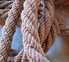 Rope Dew Thick Hemp by HQPhotos