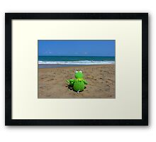 Beach Sea Sea ​​view Water Lonely Frog Framed Print