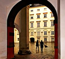 Schweizer Tor by Beatrix M Varga