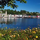 Tobermory by WatscapePhoto