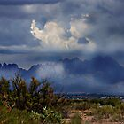 Las Cruces Mountains by Sheryl Gerhard