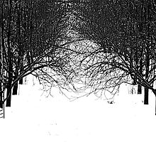 Winter Row by Jean Gregory  Evans