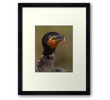 Eye-Catching Framed Print