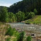 Spearfish Creek by Scott Hendricks