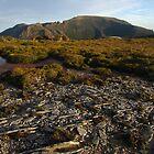 Mt La Perouse by Langana