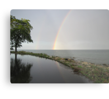 Rainbows Metal Print