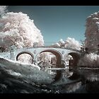 Yorkshire Sculpture Park - Infrared by Wayman