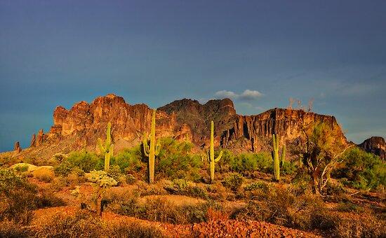 The Desert Aglow  by Saija  Lehtonen