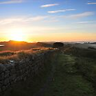Hadrian's Wall on Cuddys Crag by Joan Thirlaway