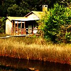 Florida Fishing Shack by Bill Gamblin