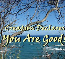 """Creation Declares You Are Good"" by Carter L. Shepard by echoesofheaven"