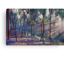 Rays Across the Gully Canvas Print