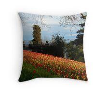 Tulip Field Tulips Tulpenbluete Flowers Throw Pillow