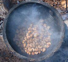 Cashew Nut Cashew Roast Plant Nut by HQPhotos