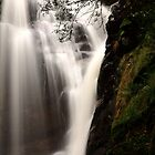 mathinna falls. northeast tasmania, australia by tim buckley | bodhiimages photography