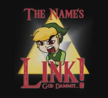 His Name Is Link... Not Zelda. by TheAaronLeigh