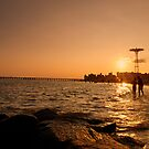 Beach Sunset - Coney Island - New York City by Vivienne Gucwa