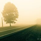 Foggy Road Ahead by -aimslo-
