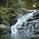 Waterfall III by -aimslo-