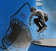 Skateboarder  by CarolM