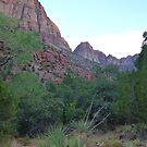 Zion Canyon Splendor © by jansnow