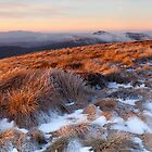 Victorian High Country by Nick Skinner