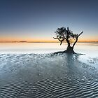 &quot;Singularity&quot;  Nudgee Beach, QLD - Australia by Jason Asher