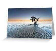 """Singularity"" ∞ Nudgee Beach, QLD - Australia Greeting Card"