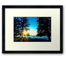 Sunrise between the Pine Trees Framed Print