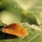 The Lord Bless Thee and Keep Thee by aprilann