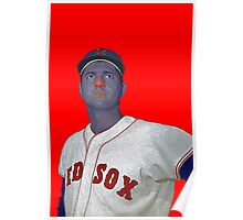Carl Yastrzemski Boston Red Sox Culture Cloth Zinc Collection Poster