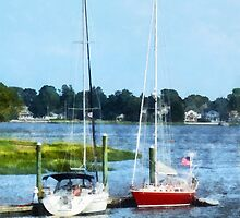 Two Docked Sailboats Norwalk, CT by Susan Savad