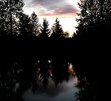 Twilight Reflections by Jess Meacham