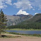 Piney River Ranch by ekmarinelli