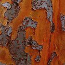 Bark  by melanie1313
