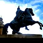 Duke of Wellington Statue ~ Edinburgh by ©The Creative Minds