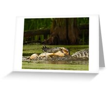 Gator Cannibalism Greeting Card