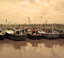 Boats at Harbor by hemantraval