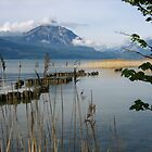 Mother's Day Walk Along Thunersee by Mary-Elizabeth Kadlub