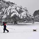 A walk in the snow by Matt Mawson