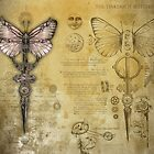 The Tinkerbox Butterfly by Bethalynne Bajema